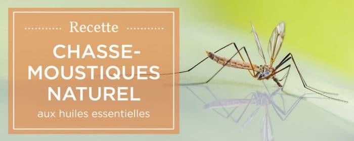 Comment loigner les moustiques munissez les pices de la - Comment chasser les moustiques ...